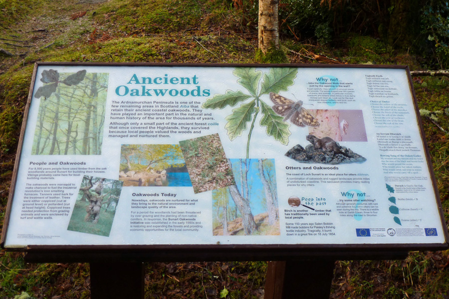 The Sunart Oakwoods interpretation board