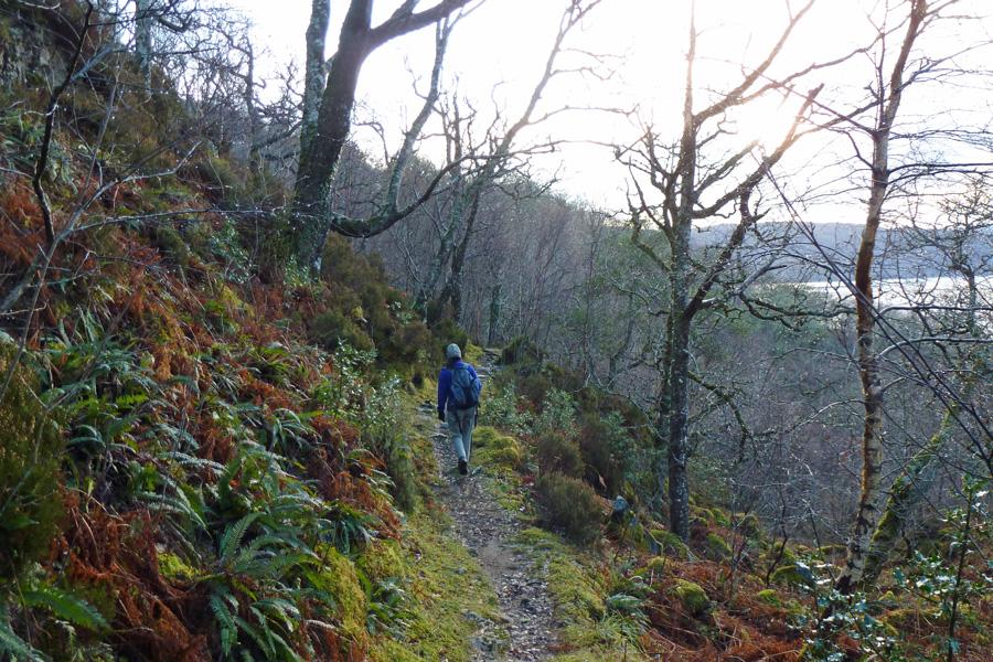 Well defined paths on the Salen Oakwoods walk