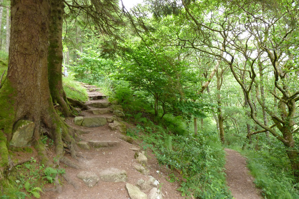 Take the stepped path up to An Torr and Signal Rock