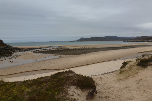 Species rich sand dunes and Machair behing the Singing Sands