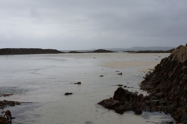 The silvery beach at low tide
