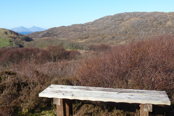 The bench at the viewpoint