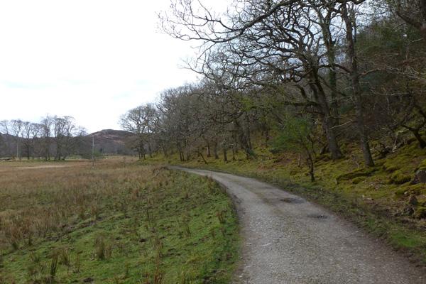 The track passes by mature atlantic oakwoods
