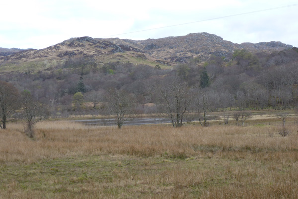 Looking back at the reedbeds fringing Loch nan Eala