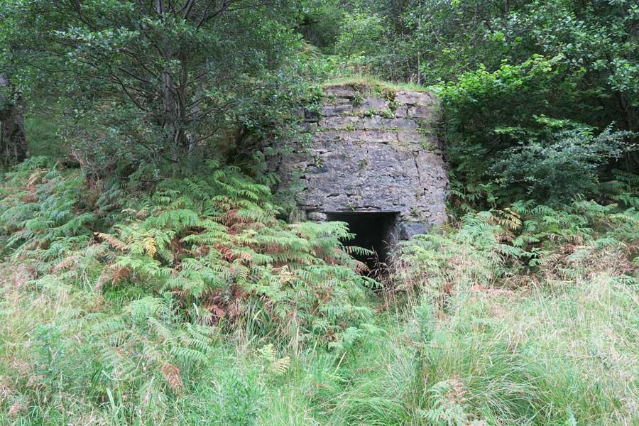 Tennyson's Waterfall Walk, Ardtornish, Morvern