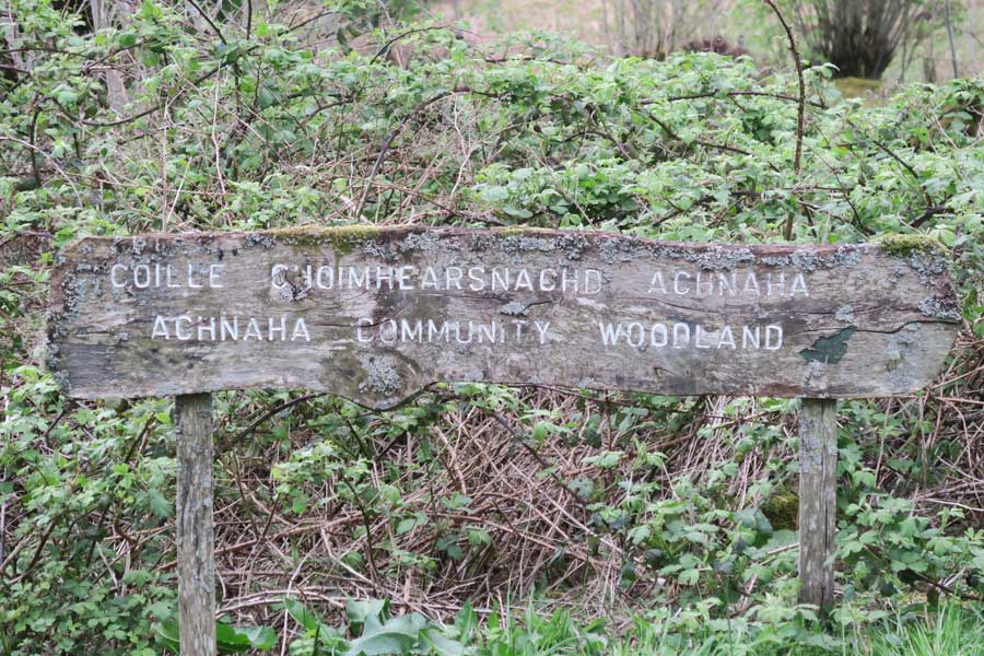 Achnaha Community Woodland