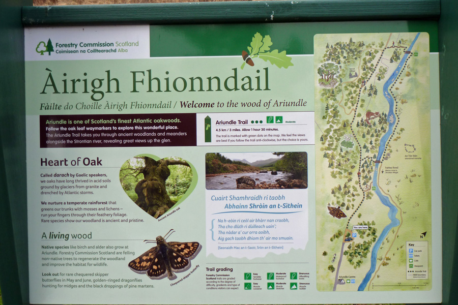 One of the Forestry Commission interpretation boards at Ariundle