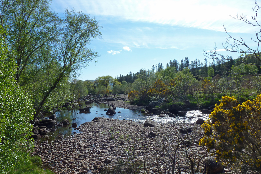 Enjoy the circular walk through Ariundle woodlands and along The River Strontian