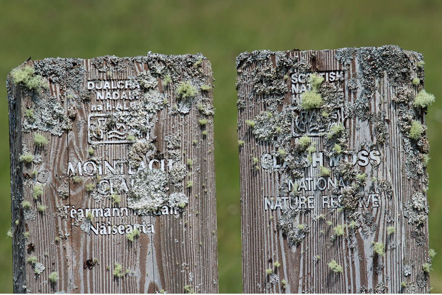 The old lichen covered sign for The Claish Moss (former)  NNR