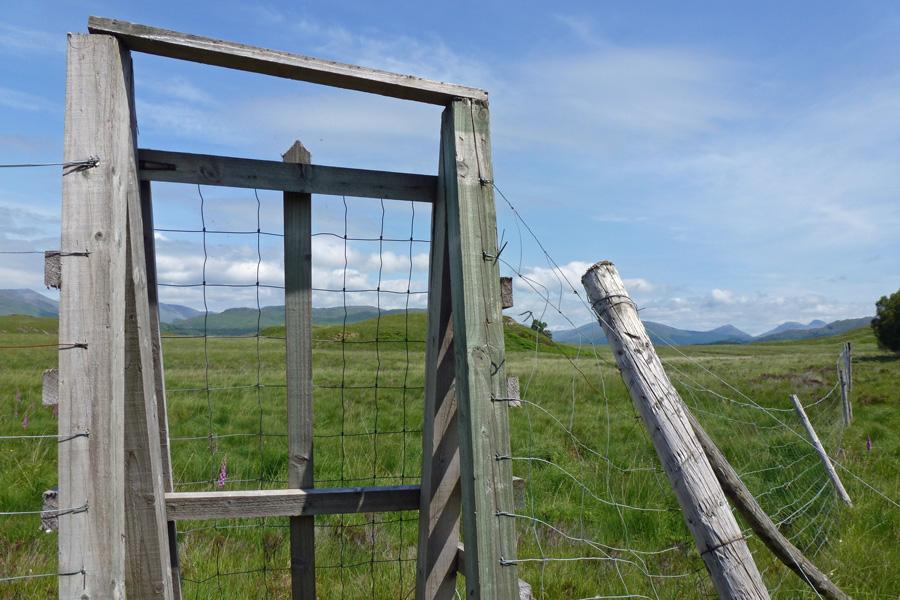 A gateway to Claish Moss