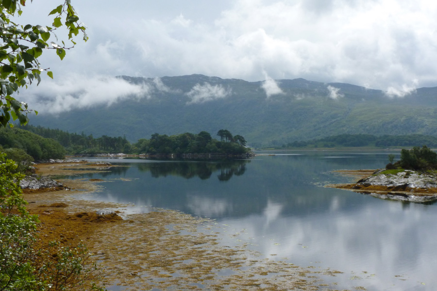 A view from the Garbh Eilean Wildlife Hide