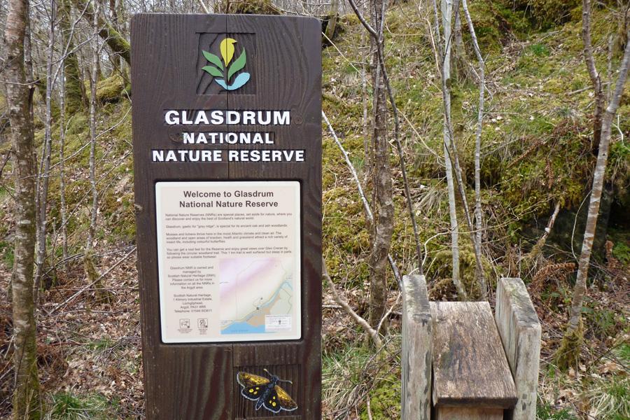 Information board and leaflet box, Glasdrum National Nature Reserve