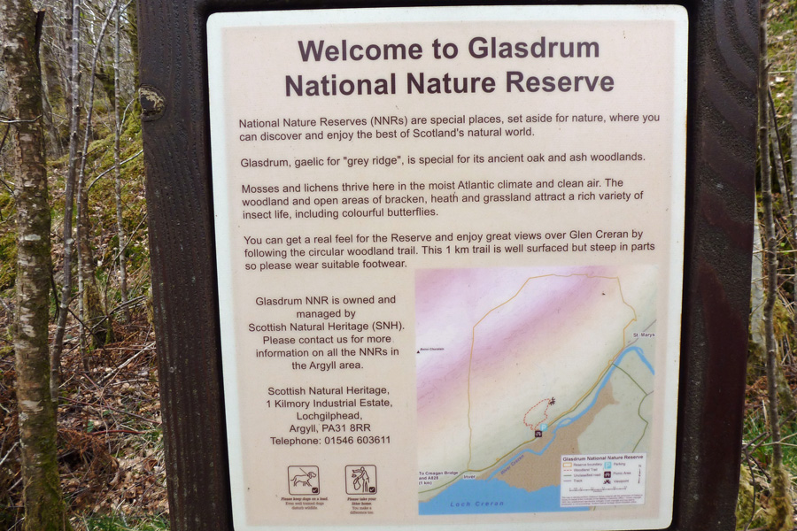 The interpretation board at Glasdrum National Nature Reserve
