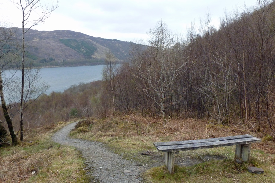 Lovely views are afforded of Loch Creran on the circular woodland trail through Glasdrum National Nature Reserve