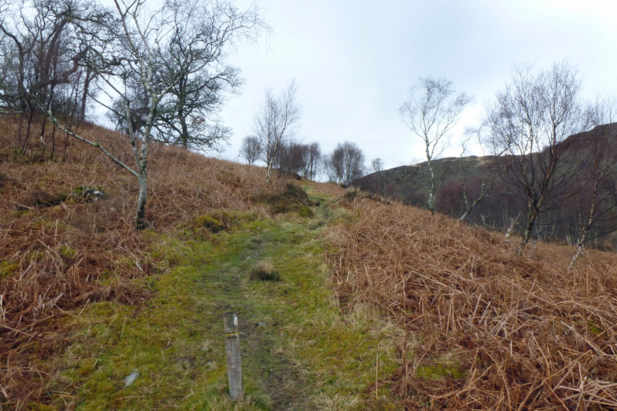 The path up the hill is a good place to see fritillaries in summer