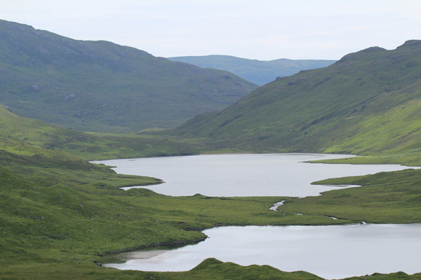 The three lochs on Glen More is a good spot to look out for Goldies