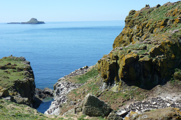 Harp Rock on Lunga