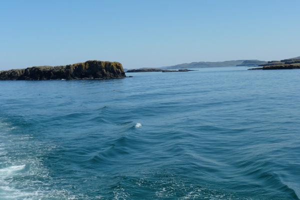 The Treshnish Isles on a calm sunny day